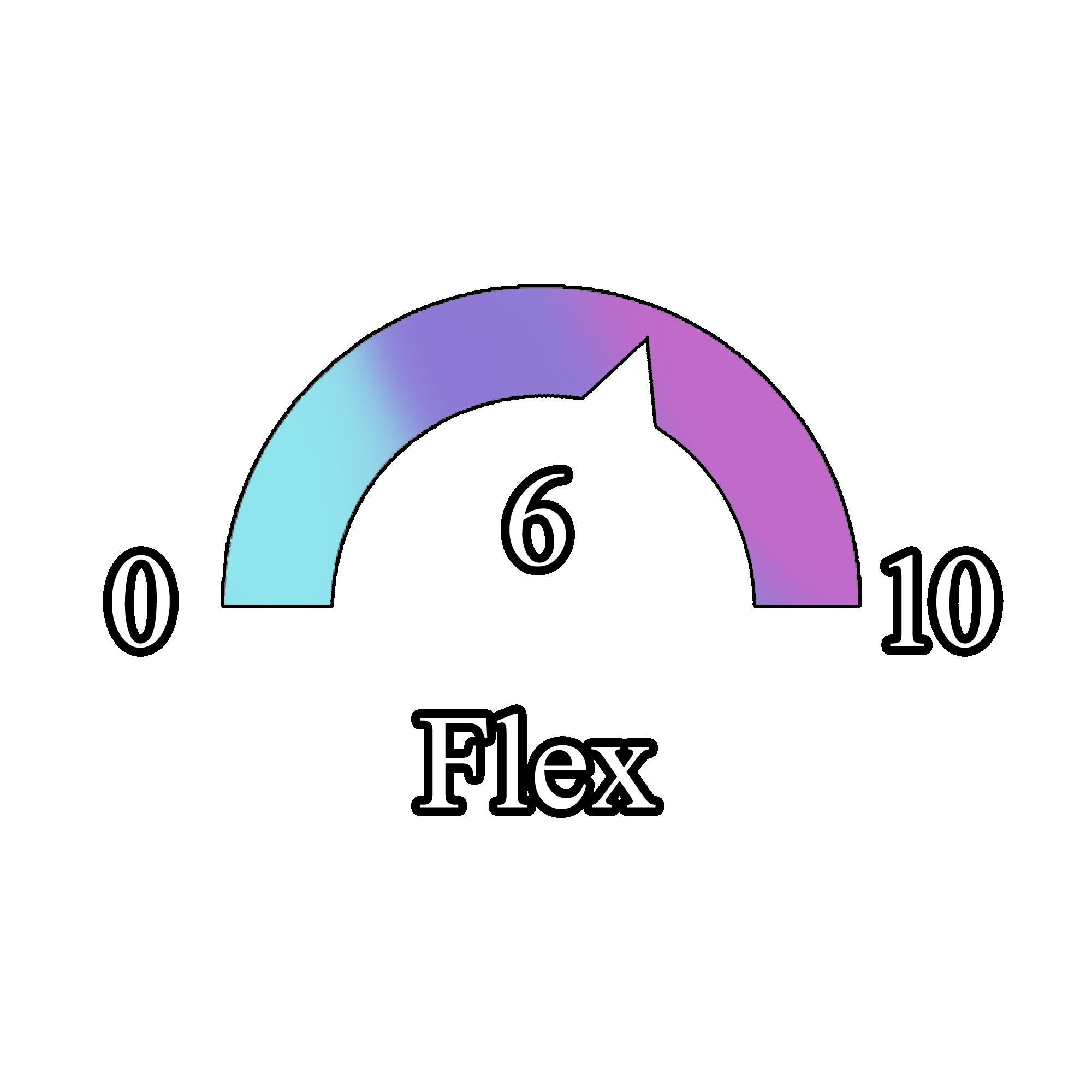 Flex 6_1.png